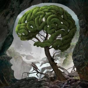 nature-mind