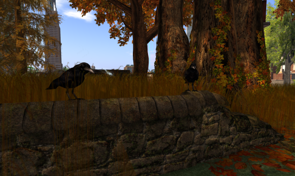 Crows keep watch.