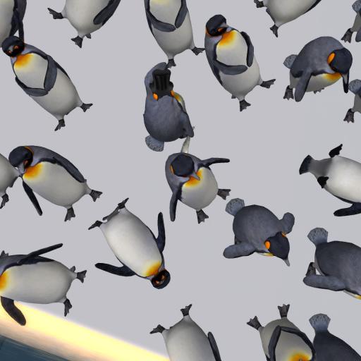 Penguin Mosh Pit Pathfinder Virtual Worlds